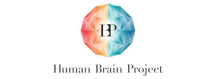 HBP Medical Informatics Platform