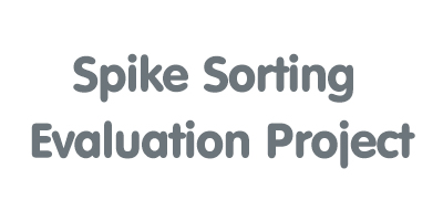 Spike Sorting Evaluation Project (German Node, Bernstein Center Berlin, and  Norwegian Node)