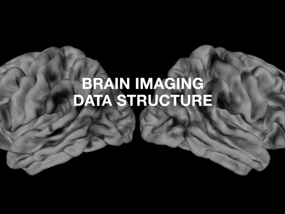 Brain Imaging Data Structure (BIDS; Canada, France, Germany, UK, USA)